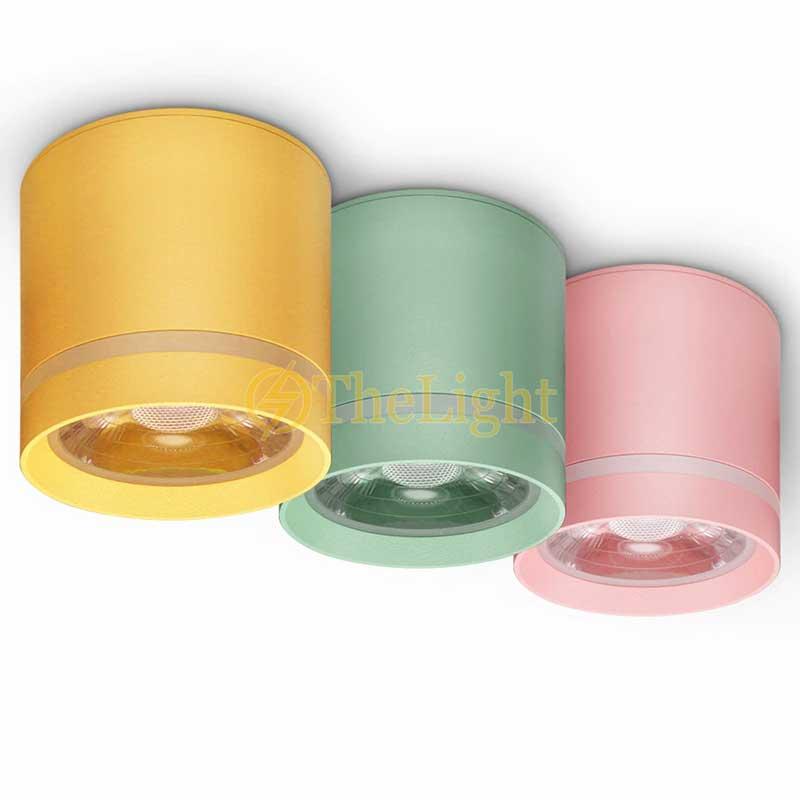 Đèn gắn trần hộp nổi LED 10w vỏ nhiều mầu cao cấp TL-OB-Color