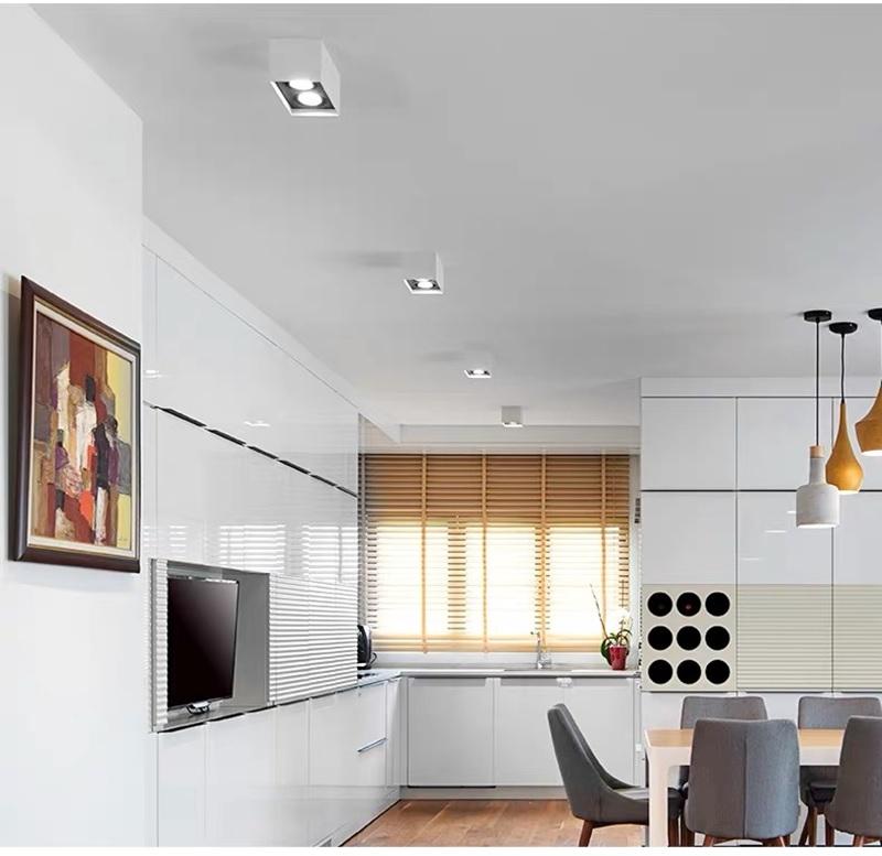 Đèn hộp nổi vuông đôi LED gắn trần cao cấp 12wx2 TL-OBV-02